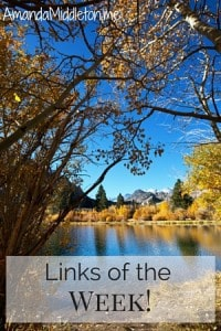 Links of the Week!