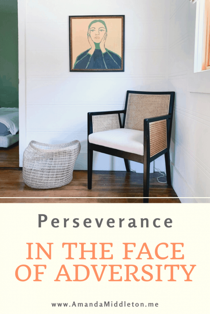 Perseverance in the Face of Adversity
